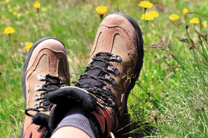 Frische Gräser und saubere Luft bilden ein gutes Rezept für die Gesundheit. Denn Pflanzen und Bäume versprühen Terpene, die wiederum die Bildung von Abwehrzellen fördern und somit das Immunsystem stärken. Wald- und Naturwandern fördern die Gesundheit aber bereits schon durch die Bewegung an der frischen Luft. Schon eine halbe Stunde hat positive Effekte.